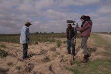 Seeds_of_Struggle_filmimg_the_harvest