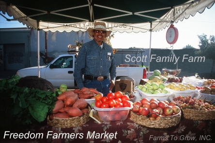 William Scott's stand at the Freedom Farmers Market